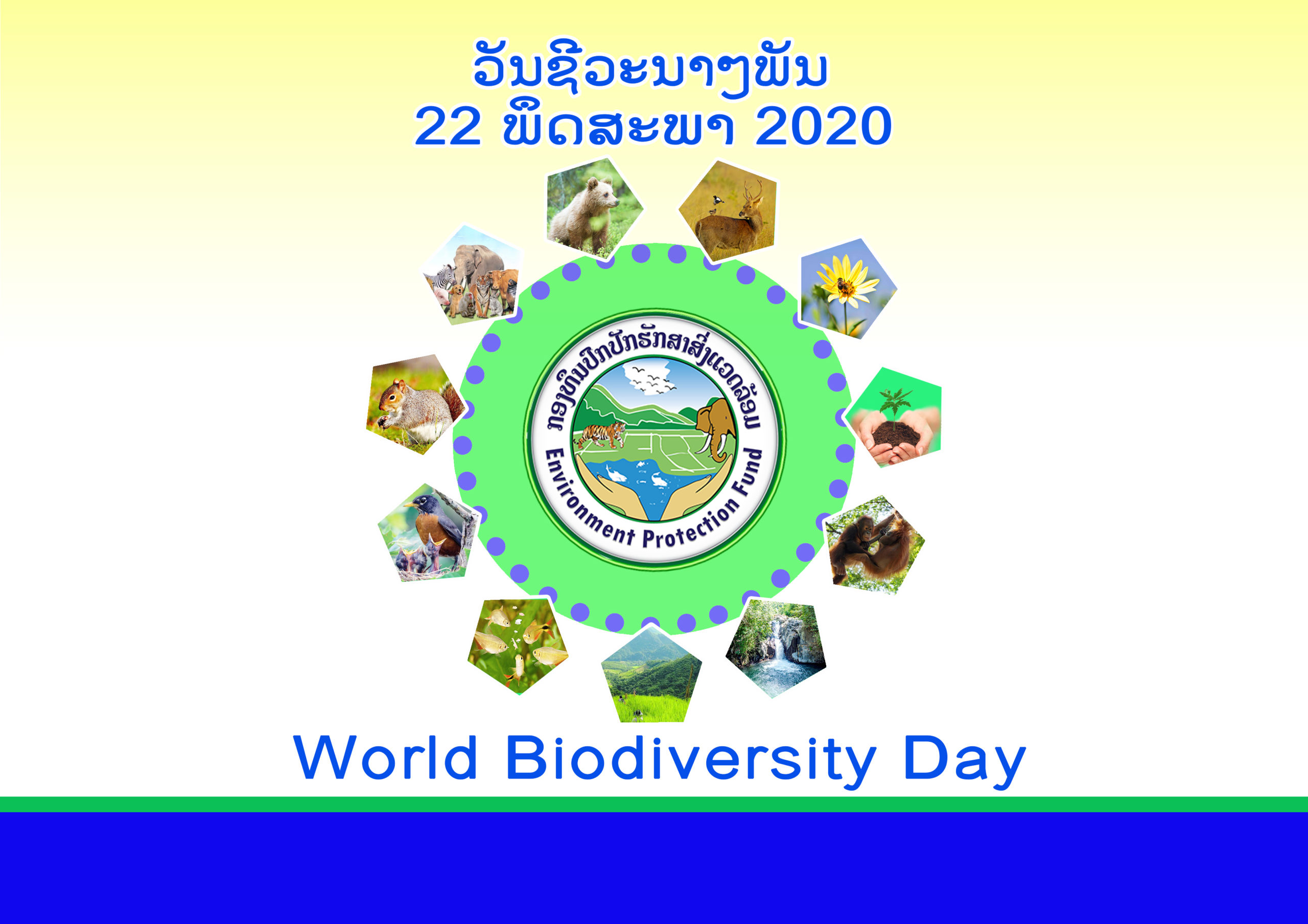 International Day for Biological Diversity (IDB)